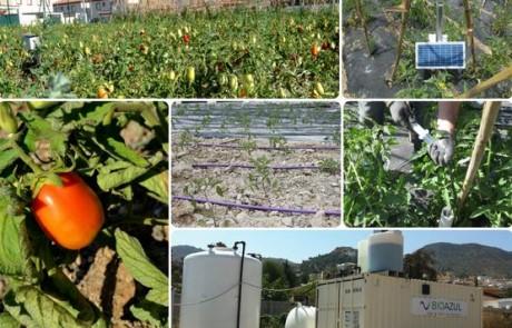 """Jornada: """"Agua regenerada, una alternativa eficiente para la Agricultura. TREAT&USE un caso práctico"""""""
