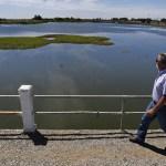 El State Water Project de California tiene previsto limitar las entregas anuales de agua a un 10% de lo que los usuarios le han solicitado para 2015