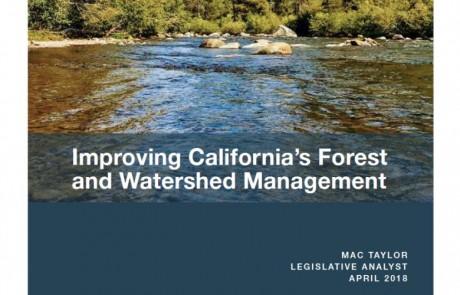 Mejora de los bosques y la gestión de las cuencas