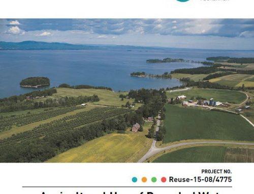 Reutilización del agua para riego agrícola: obstáculos e incentivos