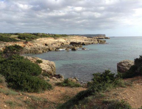 Recarga de acuíferos con agua regenerada en Menorca